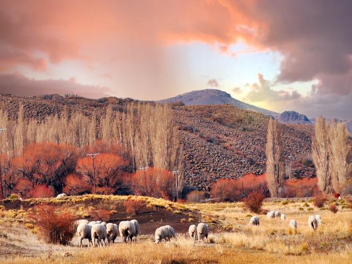 As paisagens naturais e selvagens de San Martín de los Andes são um convite para o descanso e contato com a natureza