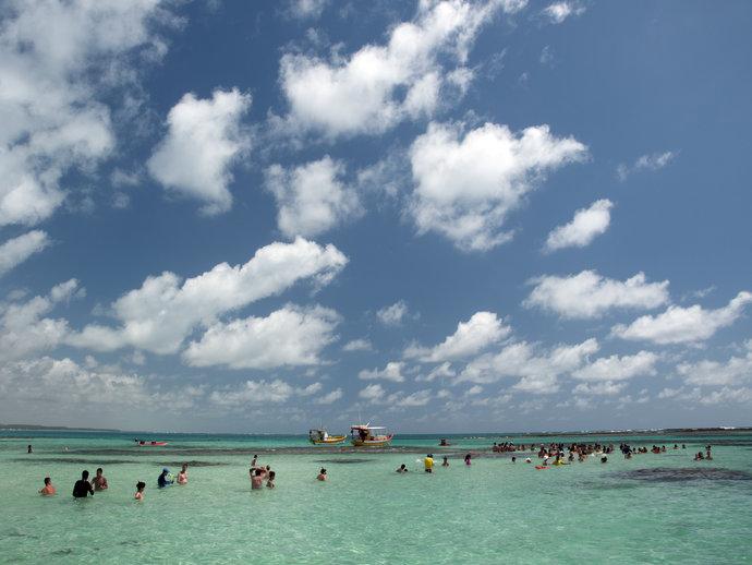 As lindas piscinas naturais de Maragogi são famosas internacionalmente